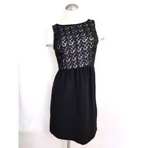 Ann Taylor LOFT Size 2 Dress Black Taupe